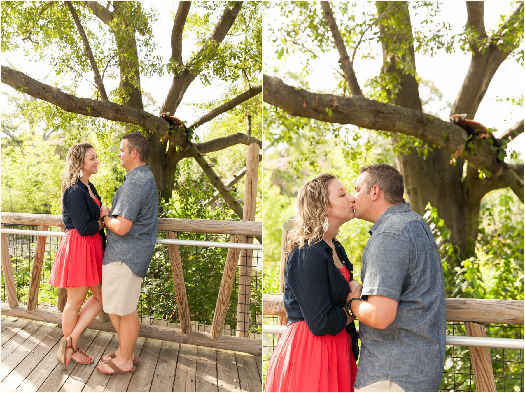 Nofolk_Zoo_engagement_photography_virginia_Jessica_ryan_photography_0143