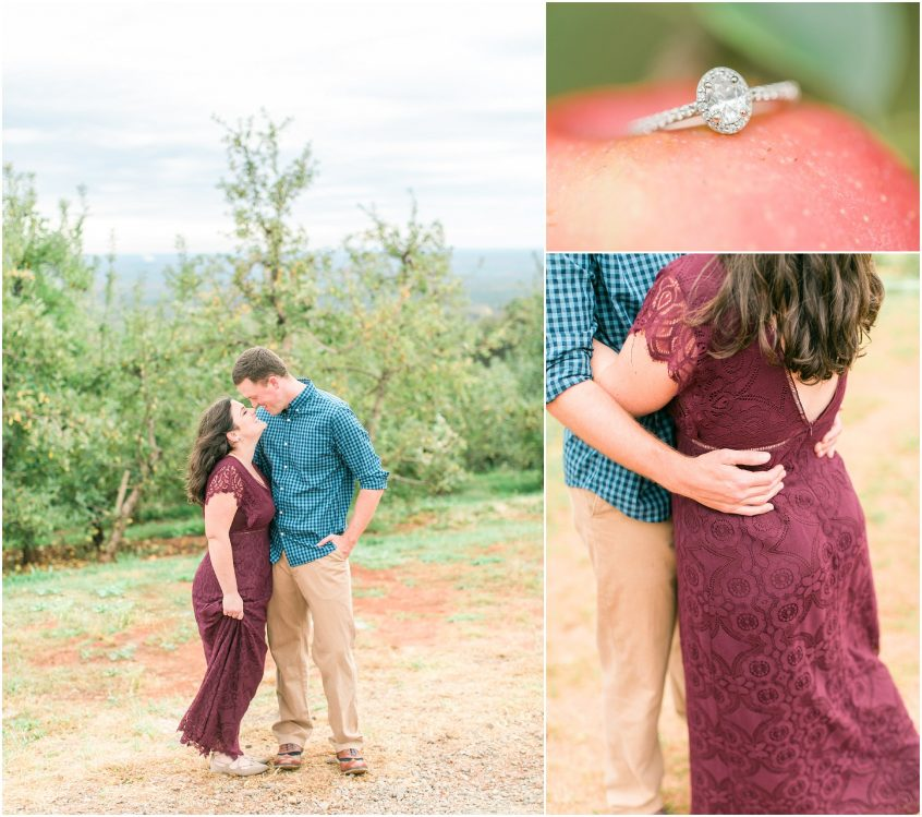 Carter Mountain Apple Orchard Engagement Portrait Charlottesville Virginia