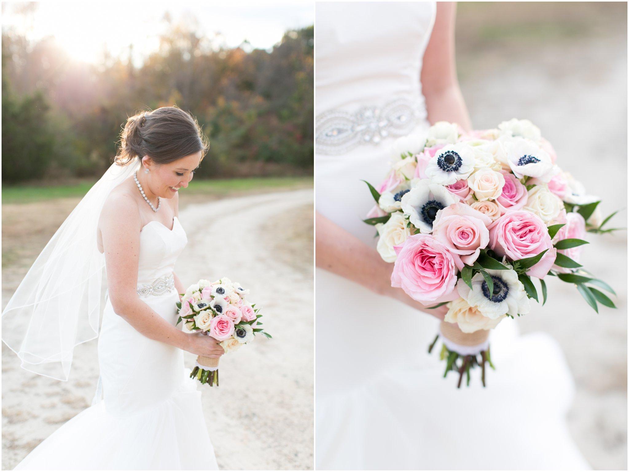 williamsburg winery wedding virginia bride portrait blush by hayley paige wedding dress