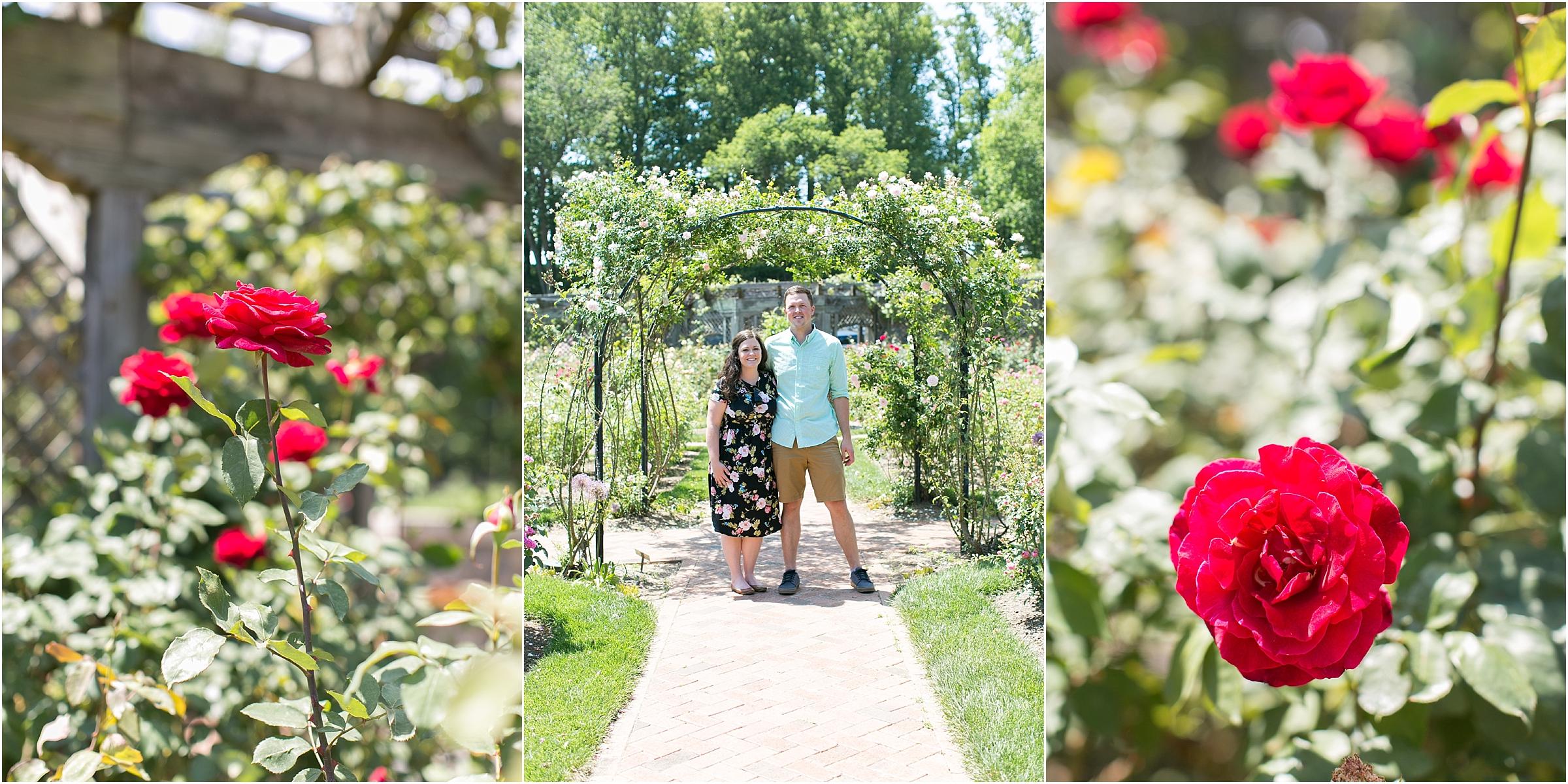 the Biltmore in Asheville North Carolina wedding rose garden