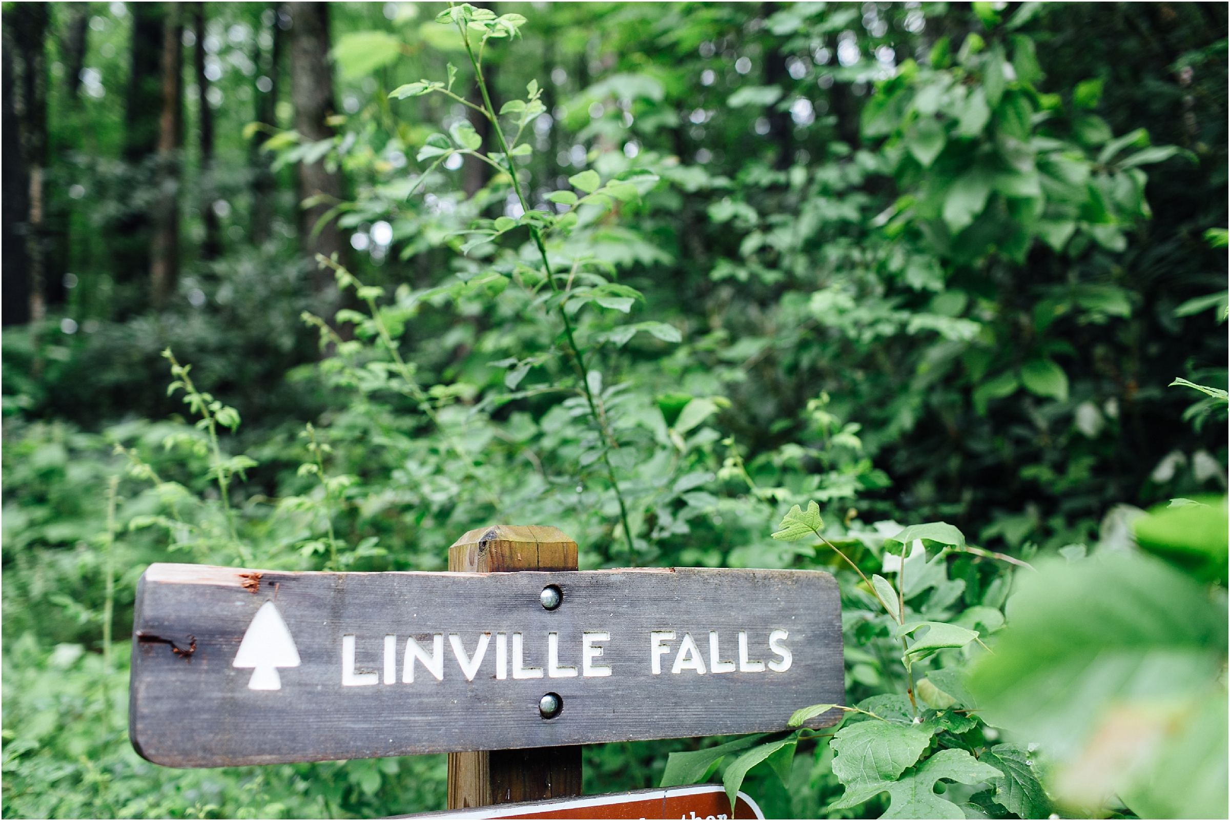 asheville north carolina honeymoon wedding photographer linville falls trail linville gorge