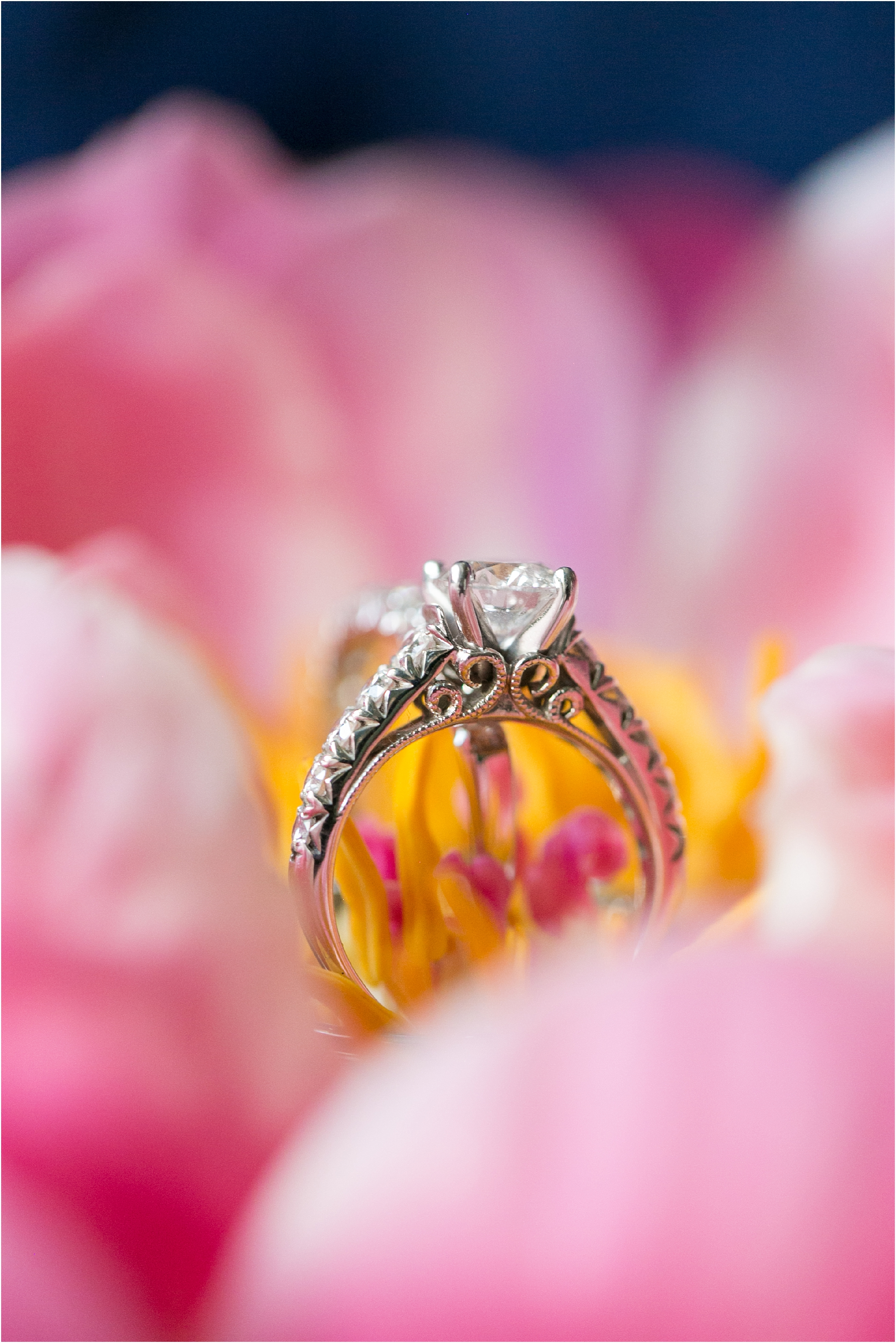 The Mrs Box wedding ring Chrysler Museum of Art Wedding Photography bridal details Wedding Rings
