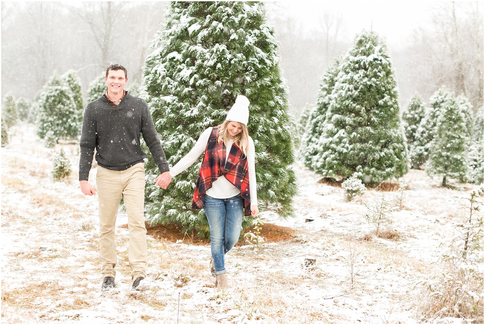 belmont christmas tree farm engagement portrait