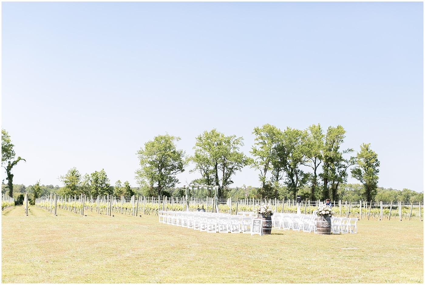 sanctuary vineyards wedding jessica ryan photography, winery wedding
